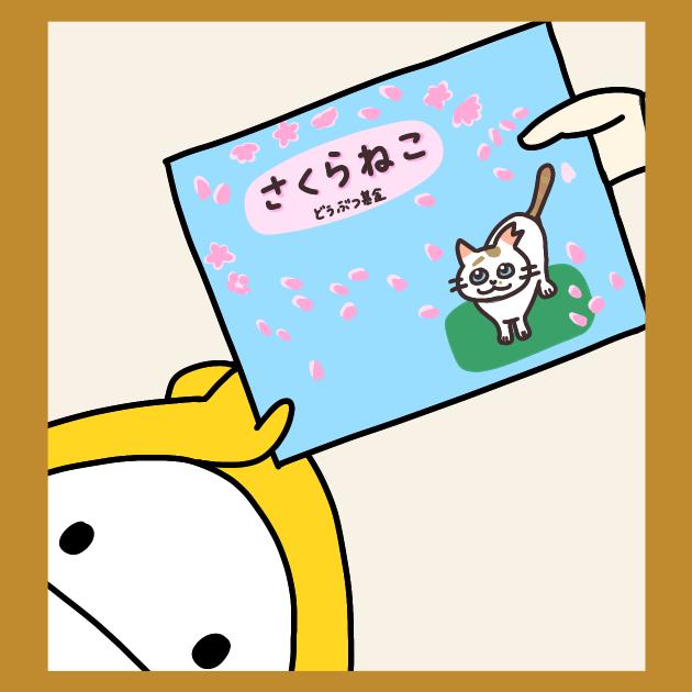 12b-猫の絵本をリレーしよう